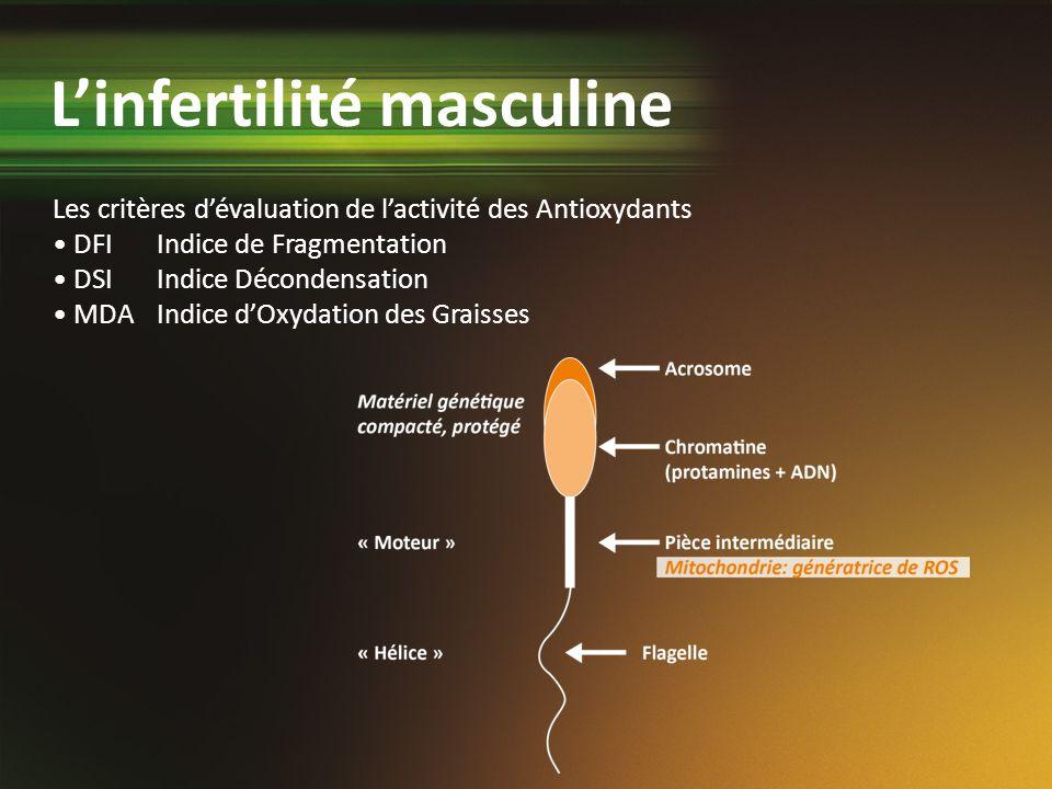 Les critères dévaluation de lactivité des Antioxydants DFIIndice de Fragmentation DSIIndice Décondensation MDAIndice dOxydation des Graisses Linfertil