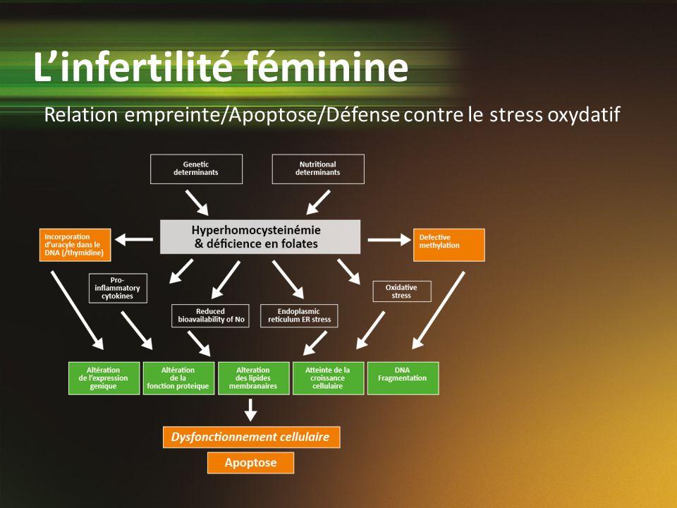 Relation empreinte/Apoptose/Défense contre le stress oxydatif Linfertilité féminine