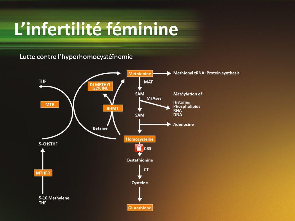 Lutte contre lhyperhomocystéïnemie Linfertilité féminine