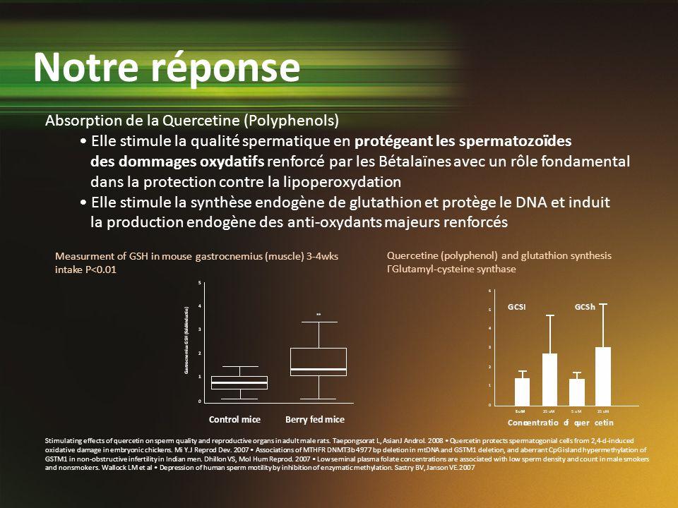 Measurment of GSH in mouse gastrocnemius (muscle) 3-4wks intake P<0.01 Absorption de la Quercetine (Polyphenols) Elle stimule la qualité spermatique e