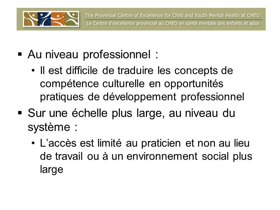 Au niveau professionnel : Il est difficile de traduire les concepts de compétence culturelle en opportunités pratiques de développement professionnel