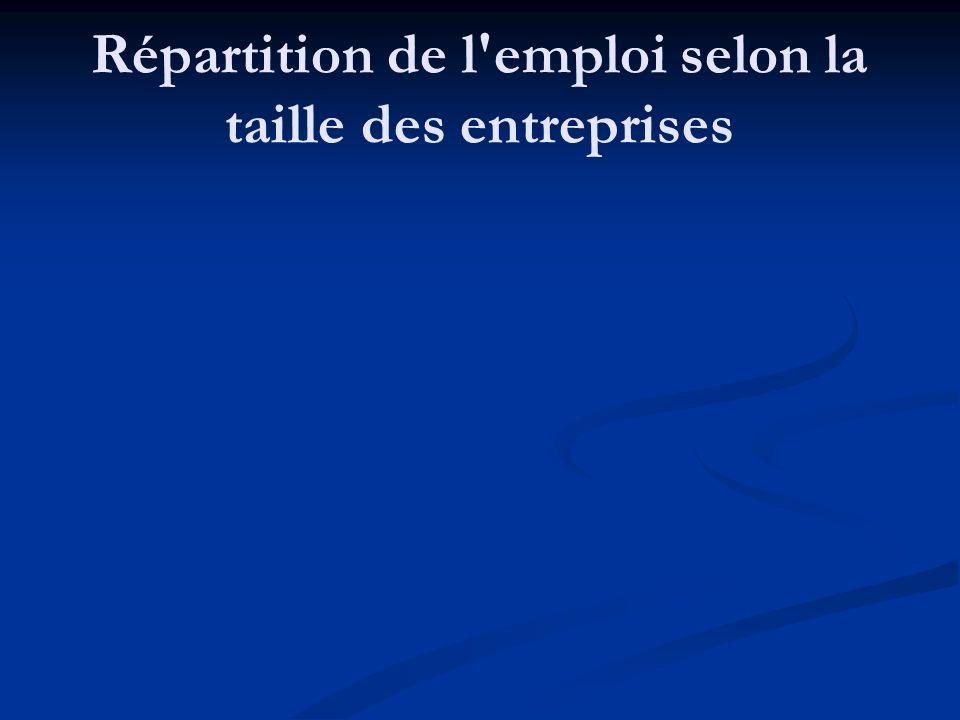 Caractéristiques des PME 3b- qu est-ce qui caractérise l emploi dans les PME.