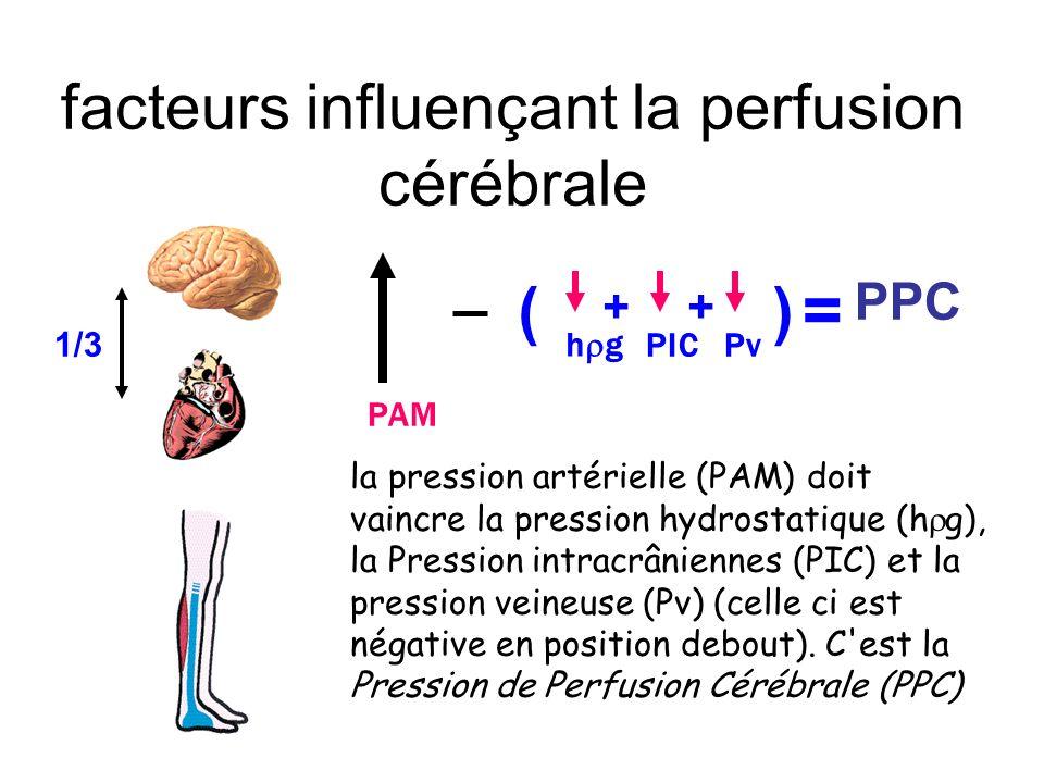 PAM PIC () = PPC Pv ++ 1/3 h g la pression artérielle (PAM) doit vaincre la pression hydrostatique (h g), la Pression intracrâniennes (PIC) et la pres