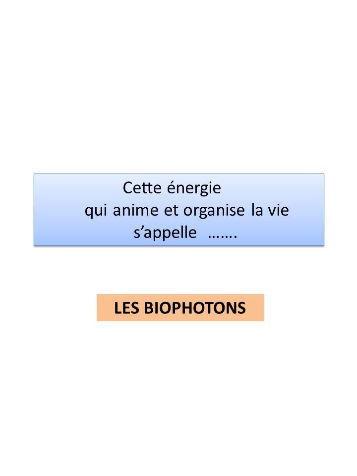 Cette énergie qui anime et organise la vie sappelle ……. Cette énergie qui anime et organise la vie sappelle ……. LES BIOPHOTONS