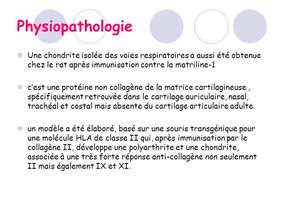 Physiopathologie Une chondrite isolée des voies respiratoires a aussi été obtenue chez le rat après immunisation contre la matriline-1 cest une protéi