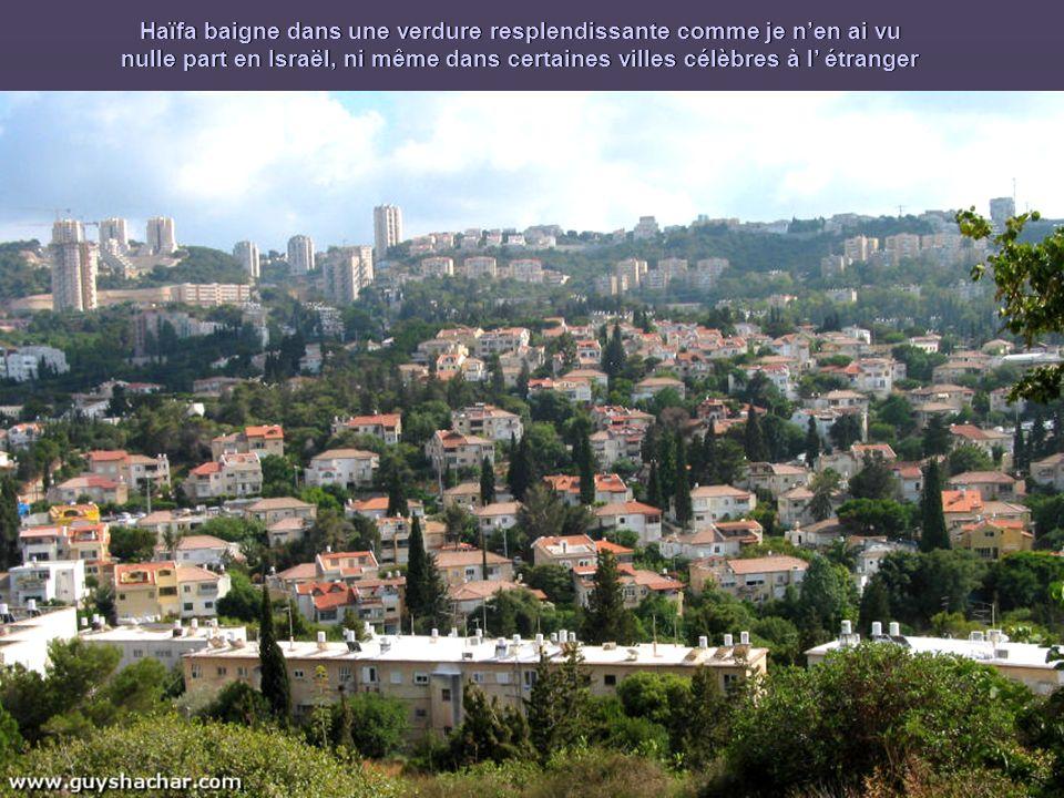 Haïfa baigne dans une verdure resplendissante comme je nen ai vu nulle part en Israël, ni même dans certaines villes célèbres à l étranger