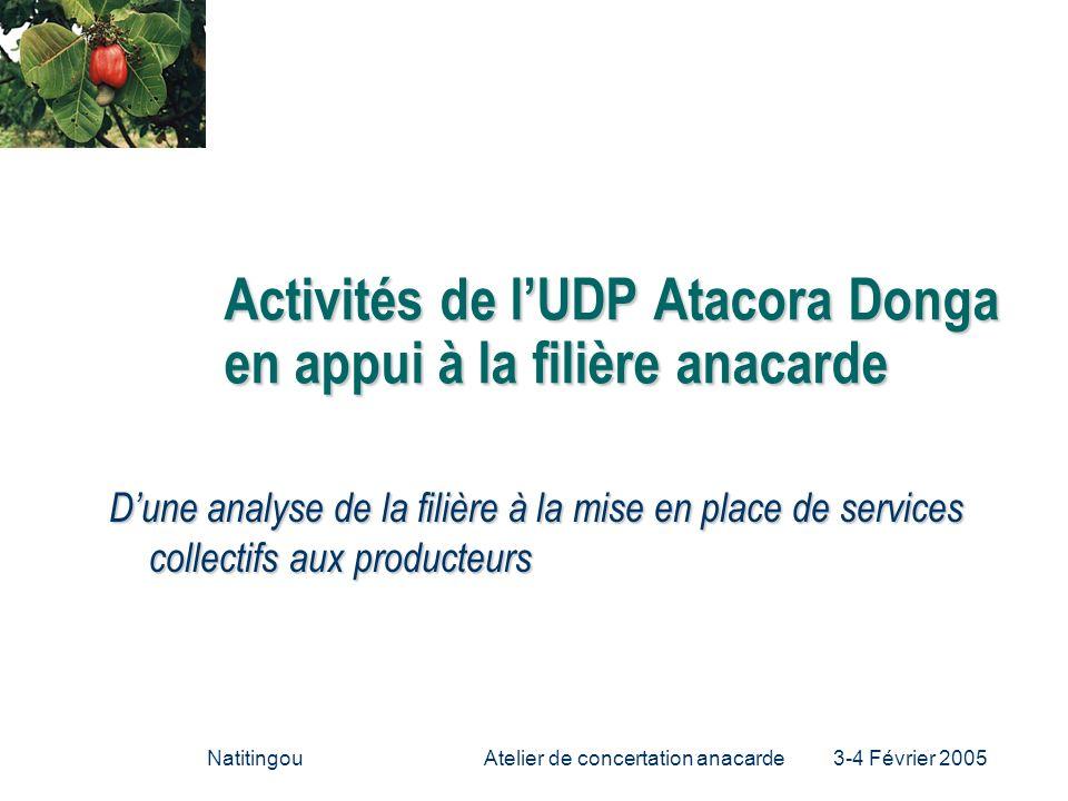NatitingouAtelier de concertation anacarde 3-4 Février 2005 Activités de lUDP Atacora Donga en appui à la filière anacarde Dune analyse de la filière