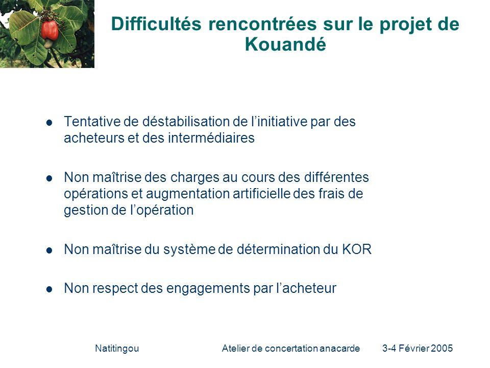 NatitingouAtelier de concertation anacarde 3-4 Février 2005 Difficultés rencontrées sur le projet de Kouandé Tentative de déstabilisation de linitiati