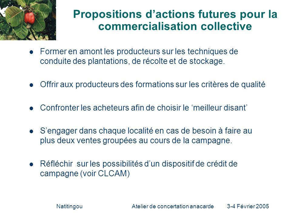 NatitingouAtelier de concertation anacarde 3-4 Février 2005 Propositions dactions futures pour la commercialisation collective Former en amont les pro