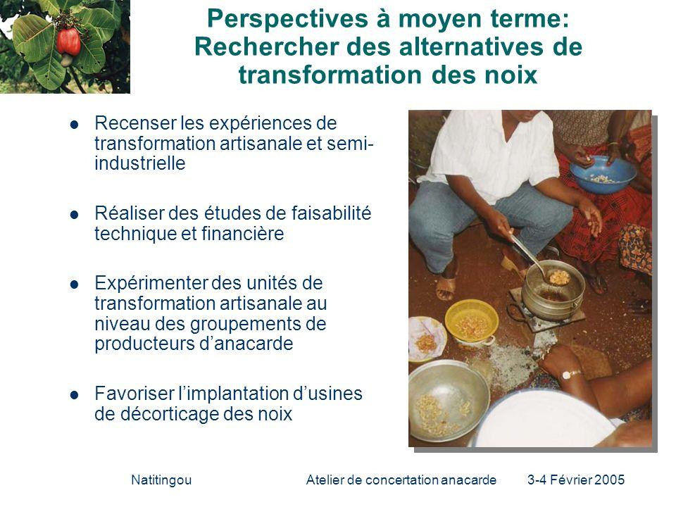 NatitingouAtelier de concertation anacarde 3-4 Février 2005 Perspectives à moyen terme: Rechercher des alternatives de transformation des noix Recense