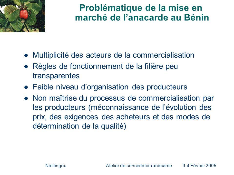 NatitingouAtelier de concertation anacarde 3-4 Février 2005 Problématique de la mise en marché de lanacarde au Bénin Multiplicité des acteurs de la co