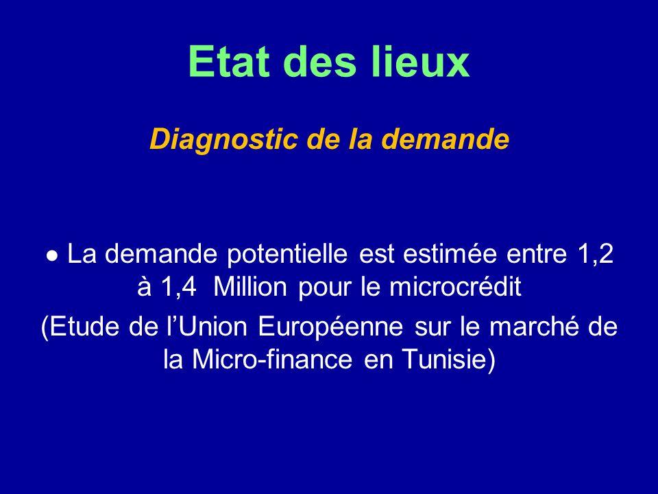 Etat des lieux Diagnostic de la demande La demande potentielle est estimée entre 1,2 à 1,4 Million pour le microcrédit (Etude de lUnion Européenne sur le marché de la Micro-finance en Tunisie)