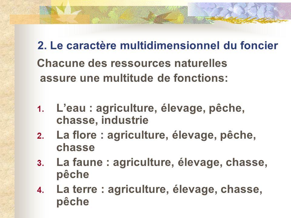 2. Le caractère multidimensionnel du foncier Chacune des ressources naturelles assure une multitude de fonctions: 1. Leau : agriculture, élevage, pêch
