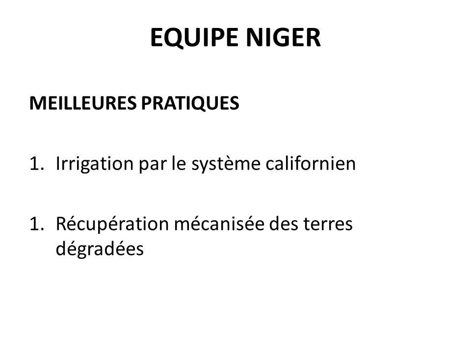 EQUIPE NIGER MEILLEURES PRATIQUES 1.Irrigation par le système californien 1.Récupération mécanisée des terres dégradées