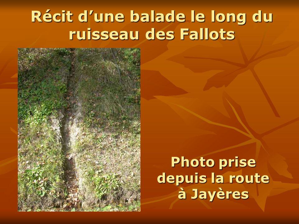 Récit dune balade le long du ruisseau des Fallots Photo prise depuis la route à Jayères