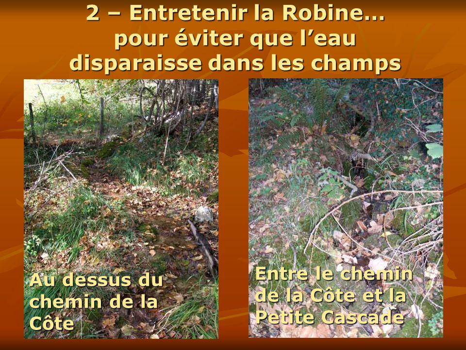 2 – Entretenir la Robine… pour éviter que leau disparaisse dans les champs Au dessus du chemin de la Côte Entre le chemin de la Côte et la Petite Casc