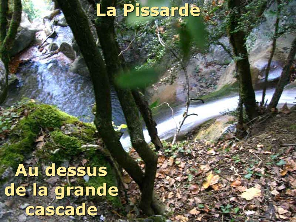 La Pissarde Au dessus de la grande cascade