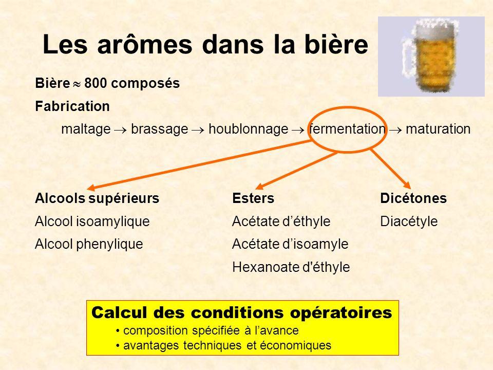 Bière 800 composés Fabrication maltage brassage houblonnage fermentation maturation Alcools supérieursEstersDicétones Alcool isoamyliqueAcétate déthyl