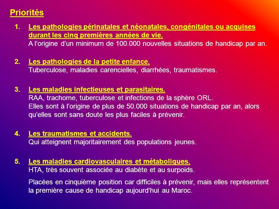 Priorités 1.Les pathologies périnatales et néonatales, congénitales ou acquises durant les cinq premières années de vie. A lorigine dun minimum de 100