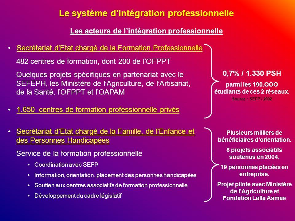 Le système dintégration professionnelle Les acteurs de lintégration professionnelle Secrétariat dEtat chargé de la Formation Professionnelle 482 centr