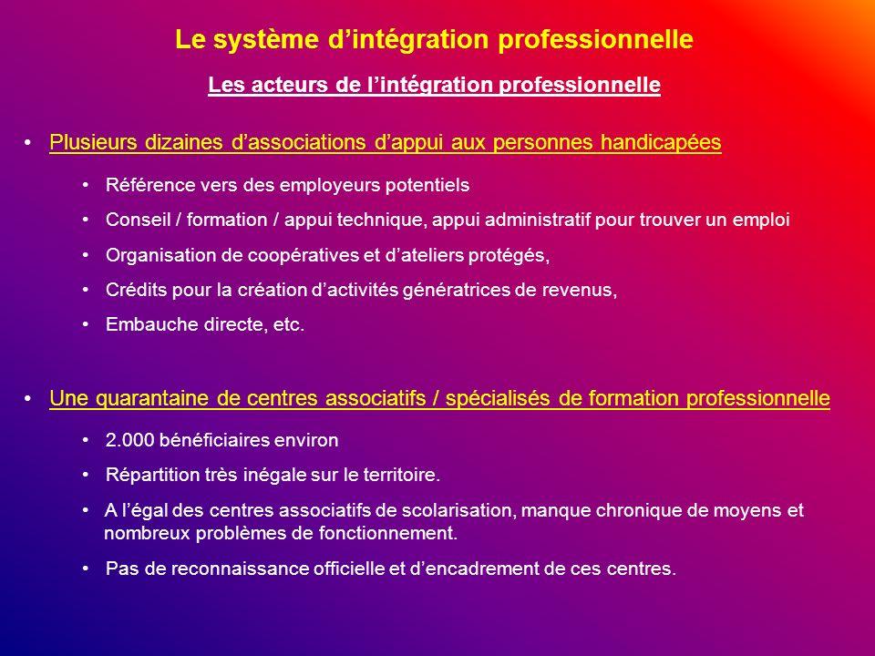 Le système dintégration professionnelle Les acteurs de lintégration professionnelle Plusieurs dizaines dassociations dappui aux personnes handicapées