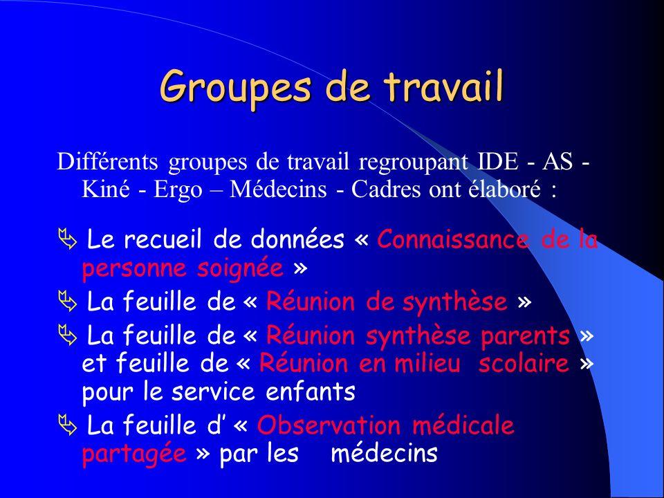 Groupes de travail Différents groupes de travail regroupant IDE - AS - Kiné - Ergo – Médecins - Cadres ont élaboré : Le recueil de données « Connaissa