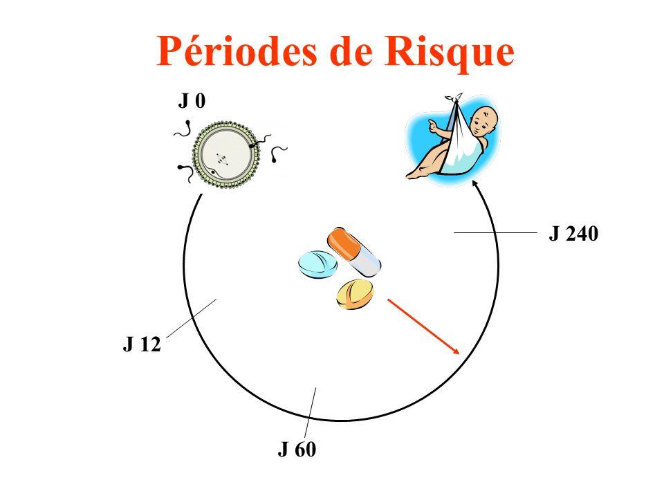 J 12 J 60 J 0 J 240 Périodes de Risque