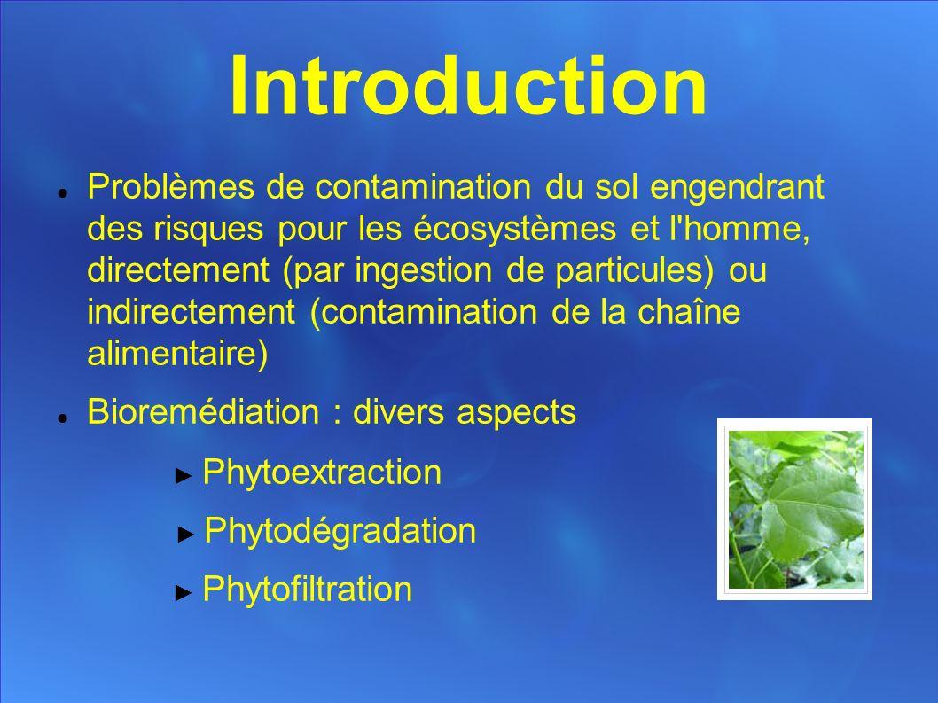 Introduction Problèmes de contamination du sol engendrant des risques pour les écosystèmes et l homme, directement (par ingestion de particules) ou indirectement (contamination de la chaîne alimentaire) Bioremédiation : divers aspects Phytoextraction Phytodégradation Phytofiltration