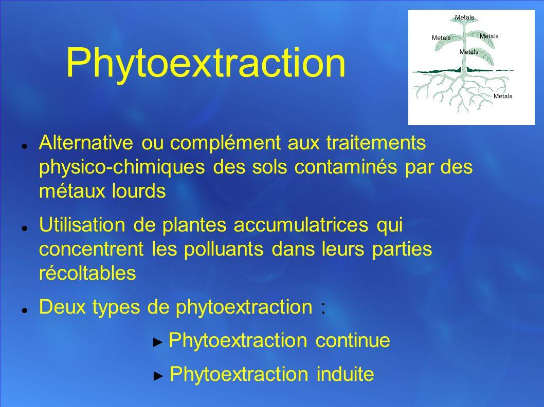 Phytoextraction Alternative ou complément aux traitements physico-chimiques des sols contaminés par des métaux lourds Utilisation de plantes accumulatrices qui concentrent les polluants dans leurs parties récoltables Deux types de phytoextraction : Phytoextraction continue Phytoextraction induite
