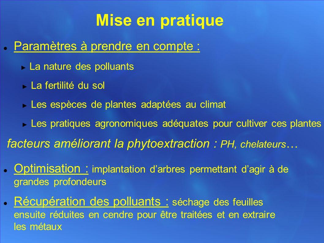 La phyto-exploitation minière Déf : Utilisation de plantes pour extraire des substances inorganiques de valeur (métaux précieux...)