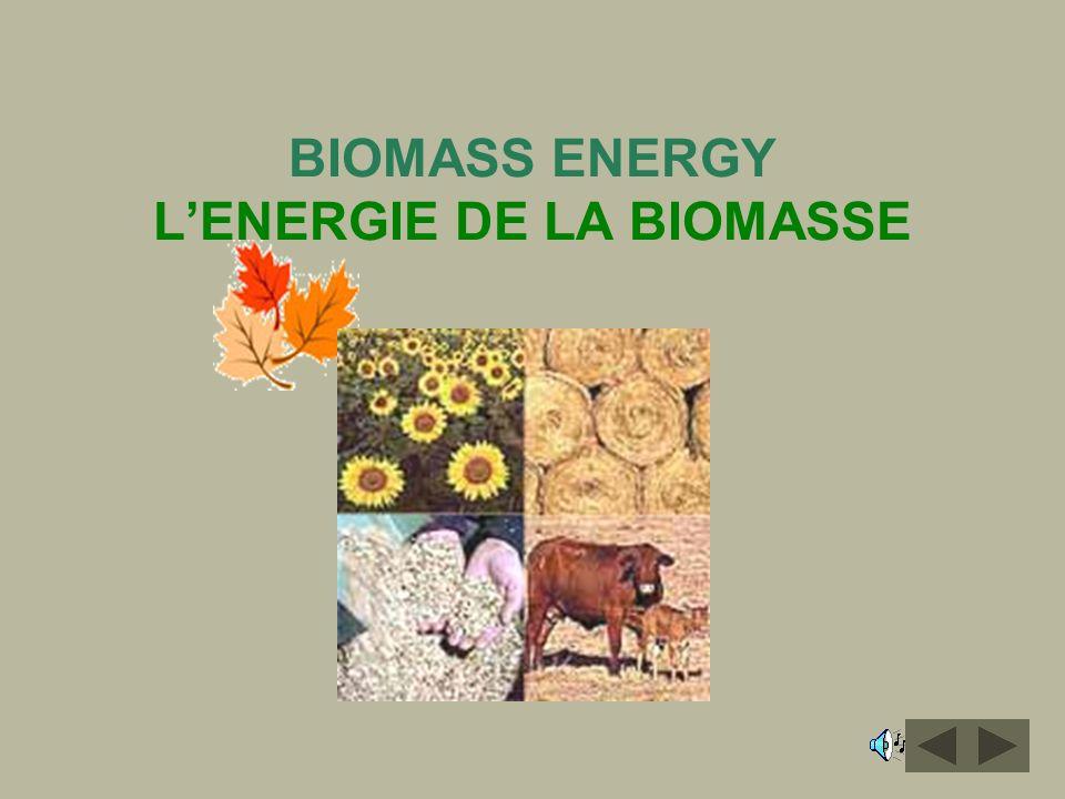 BIOMASS ENERGY LENERGIE DE LA BIOMASSE