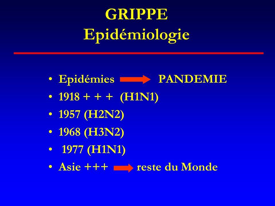 La grippe espagnole (1918-1919) « lépidémie la plus considérable et la plus rapide de lhistoire de lhumanité » C.Hannoun En France : 120 000 morts Aux Etats Unis : 400 000 morts, Age moyen 33 ans (Vs 50 à 60 ans) Taux dattaque élevé : 40% Mortalité 3% Fréquence des formes fulminantes : jeunes adultes, mortalité X 20 Séquelles plus fréquentes : Maladie de Parkinson, Eite Van Economo Grippe A / CL-FB / 21.10.05