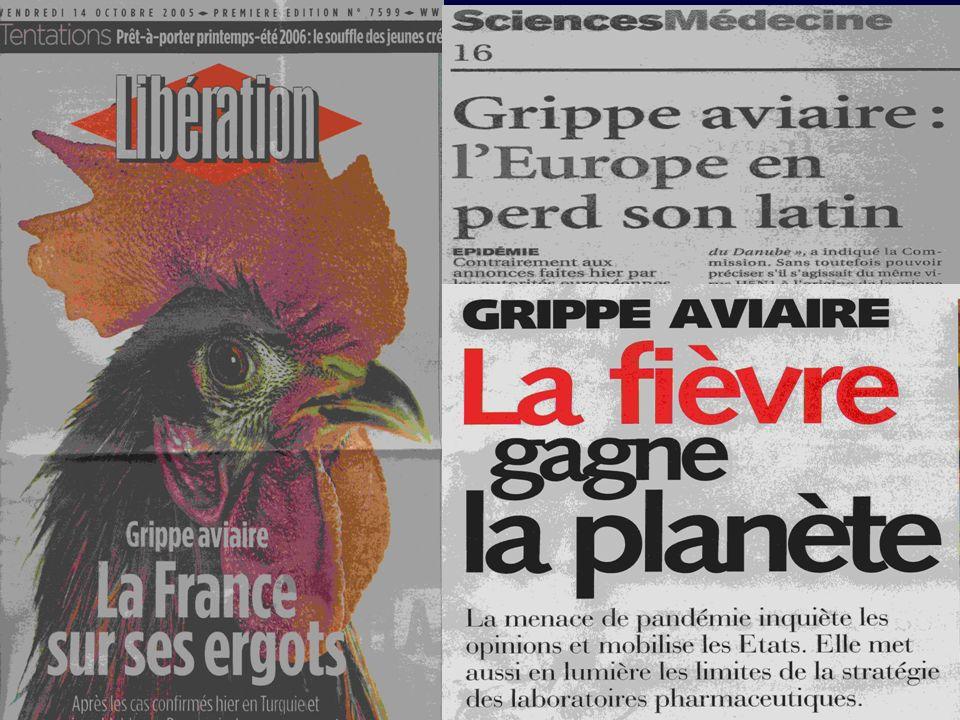 Grippe Aviaire Cas Humain « Accidentels » Au contact de volailles malades Voie digestive : fientes Aerosols Virus aviaire non muté Transmission interhumaine = 0 ou ~ 0