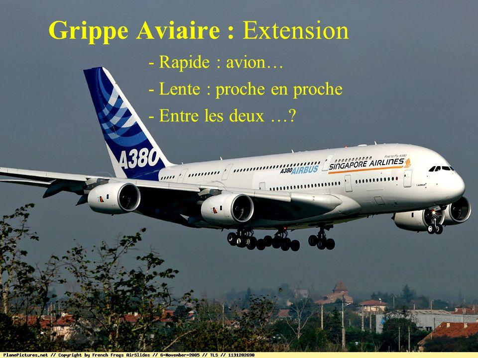 Grippe Aviaire : Extension - Rapide : avion… - Lente : proche en proche - Entre les deux …?