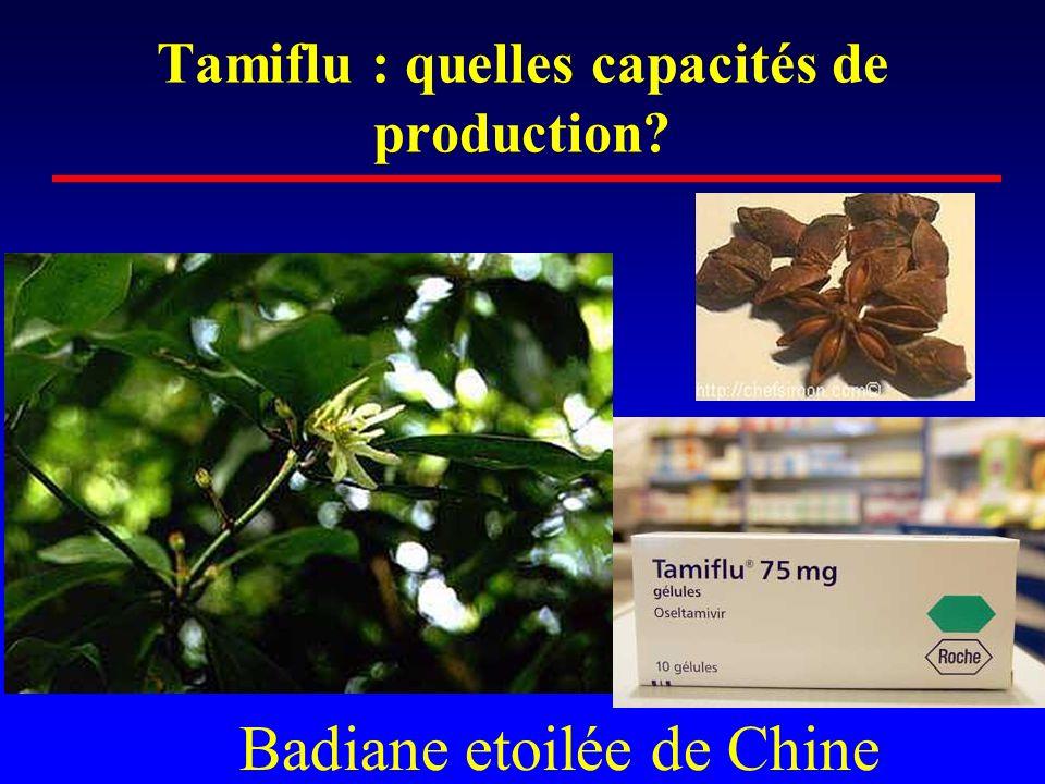Tamiflu : quelles capacités de production? Badiane etoilée de Chine