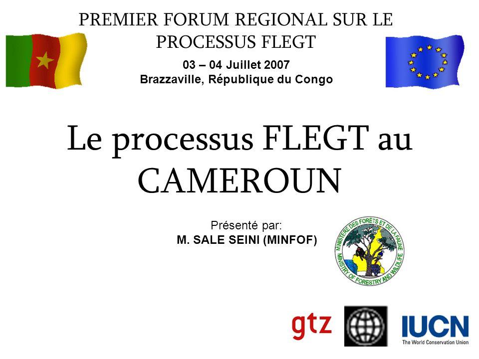 Le processus FLEGT au CAMEROUN PREMIER FORUM REGIONAL SUR LE PROCESSUS FLEGT 03 – 04 Juillet 2007 Brazzaville, République du Congo Présenté par: M. SA
