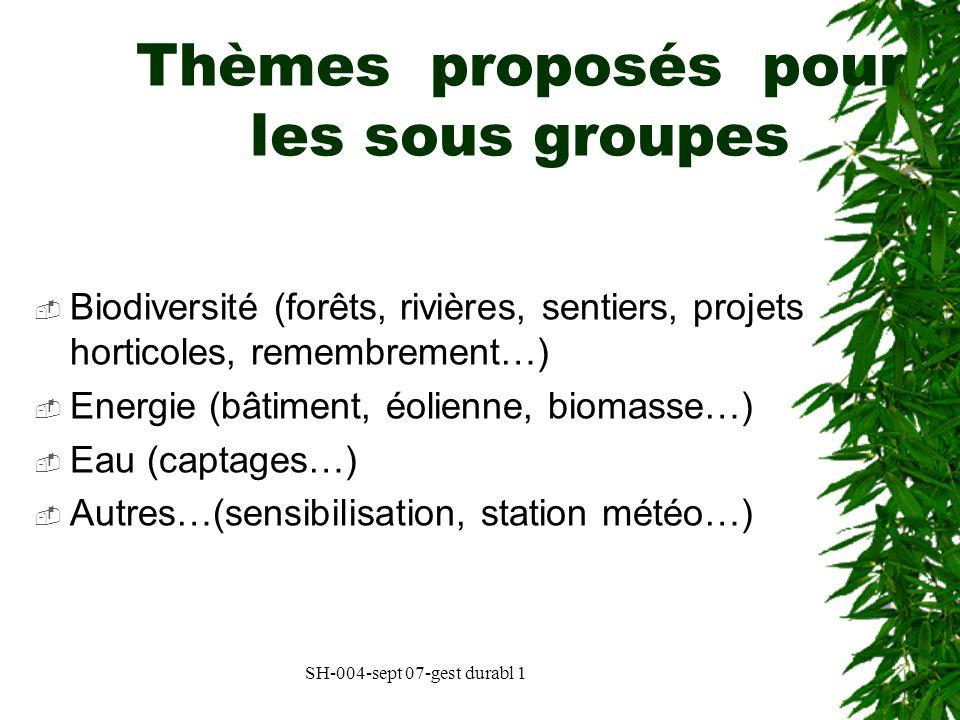 SH-004-sept 07-gest durabl 1 Thèmes proposés pour les sous groupes Biodiversité (forêts, rivières, sentiers, projets horticoles, remembrement…) Energi