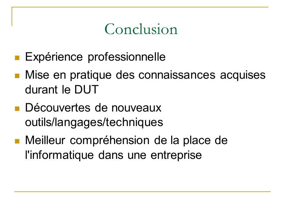 Conclusion Expérience professionnelle Mise en pratique des connaissances acquises durant le DUT Découvertes de nouveaux outils/langages/techniques Mei