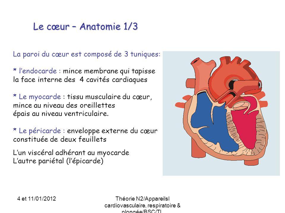 Le cœur – Anatomie 1/3 La paroi du cœur est composé de 3 tuniques: * lendocarde : mince membrane qui tapisse la face interne des 4 cavités cardiaques