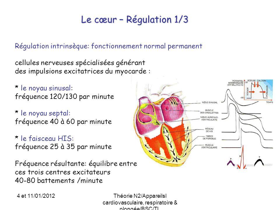 Le cœur – Régulation 1/3 Régulation intrinsèque: fonctionnement normal permanent cellules nerveuses spécialisées générant des impulsions excitatrices
