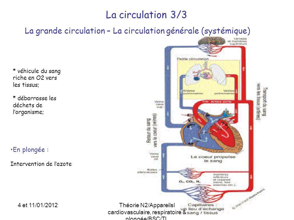 Le cœur – Physiologie et fonctionnement 2/3 3 2 1 Systole auriculaire Systole ventriculaire Diastole 4 et 11/01/2012Théorie N2/Appareilsl cardiovasculaire, respiratoire & plongée/BSC/TL