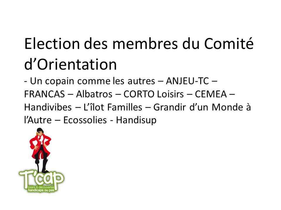 Election des membres du Comité dOrientation - Un copain comme les autres – ANJEU-TC – FRANCAS – Albatros – CORTO Loisirs – CEMEA – Handivibes – Lîlot