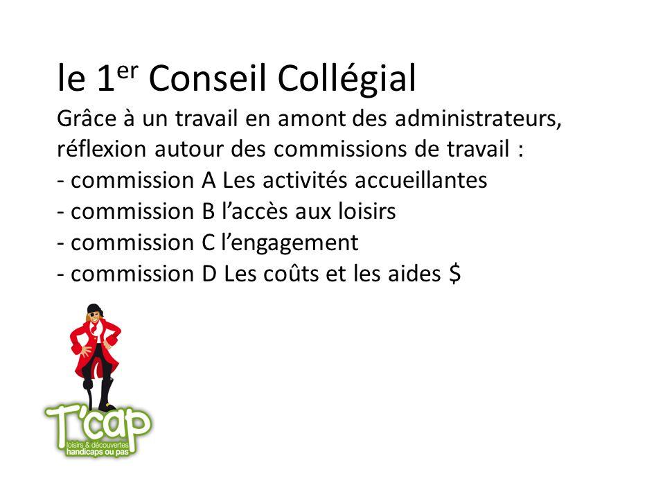 le 1 er Conseil Collégial Grâce à un travail en amont des administrateurs, réflexion autour des commissions de travail : - commission A Les activités