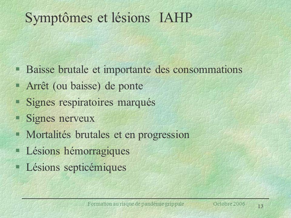 13 Formation au risque de pandémie grippale Octobre 2006 Symptômes et lésions IAHP §Baisse brutale et importante des consommations §Arrêt (ou baisse)