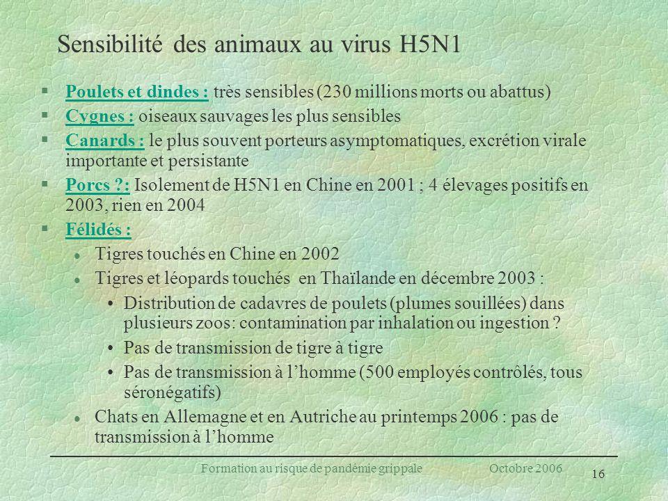 16 Formation au risque de pandémie grippale Octobre 2006 Sensibilité des animaux au virus H5N1 §Poulets et dindes : très sensibles (230 millions morts