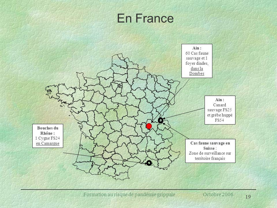 19 Formation au risque de pandémie grippale Octobre 2006 En France Ain : 60 Cas faune sauvage et 1 foyer dindes, dans la Dombes Cas faune sauvage en S