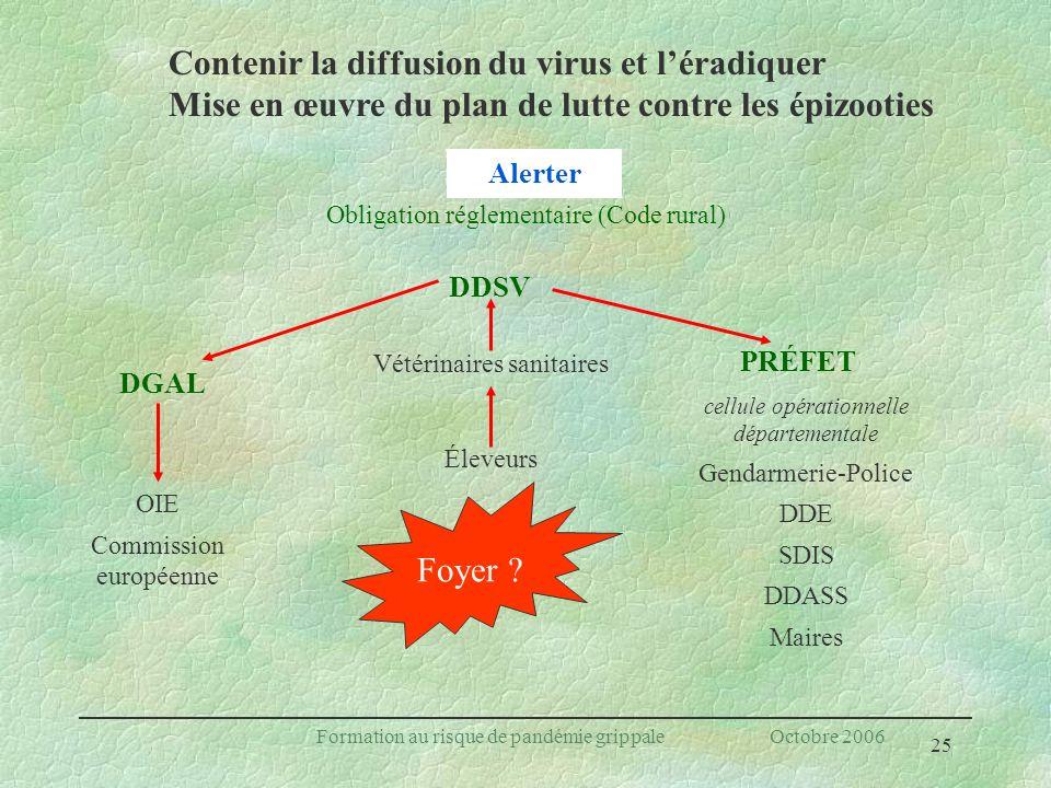 25 Formation au risque de pandémie grippale Octobre 2006 cellule opérationnelle départementale Gendarmerie-Police DDE SDIS DDASS Maires DDSV Foyer ? D