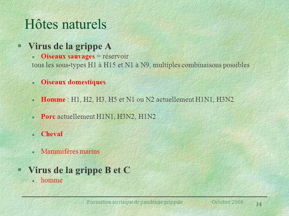 34 Formation au risque de pandémie grippale Octobre 2006 Hôtes naturels §Virus de la grippe A l Oiseaux sauvages = réservoir tous les sous-types H1 à
