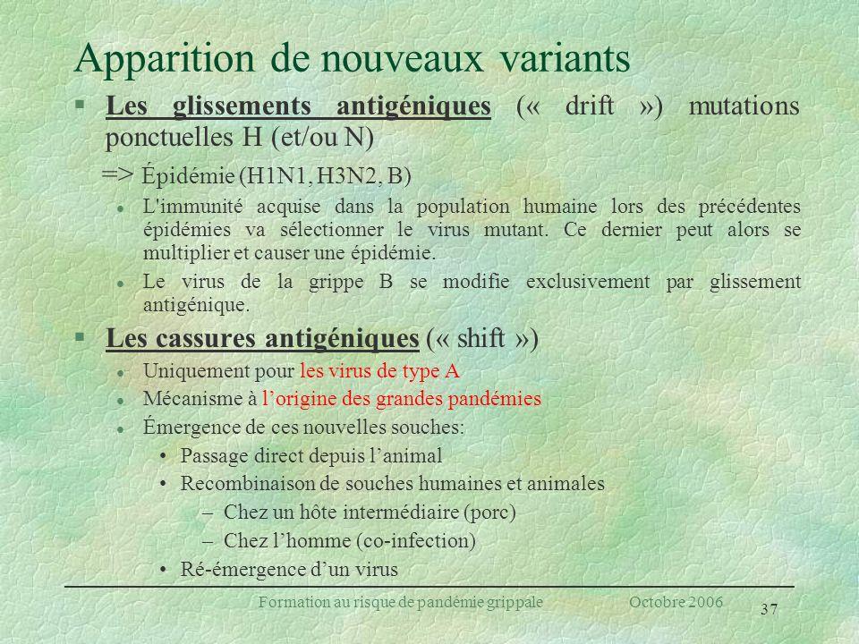 37 Formation au risque de pandémie grippale Octobre 2006 Apparition de nouveaux variants §Les glissements antigéniques (« drift ») mutations ponctuell