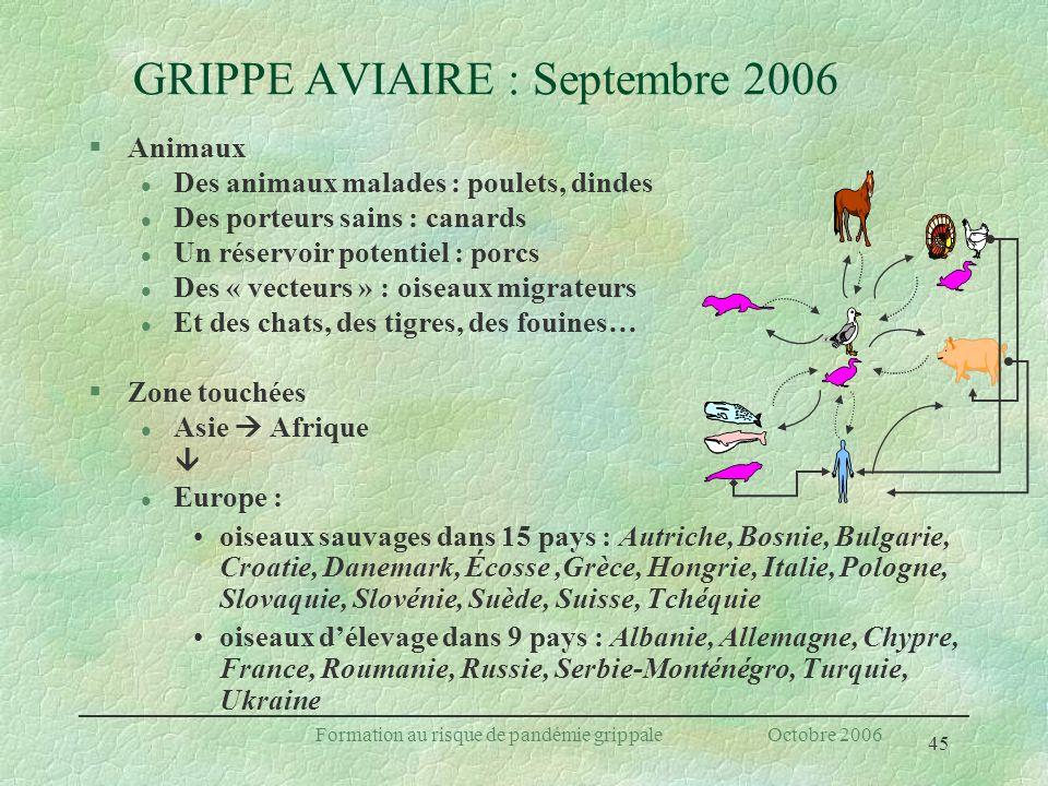 45 Formation au risque de pandémie grippale Octobre 2006 GRIPPE AVIAIRE : Septembre 2006 §Animaux l Des animaux malades : poulets, dindes l Des porteu